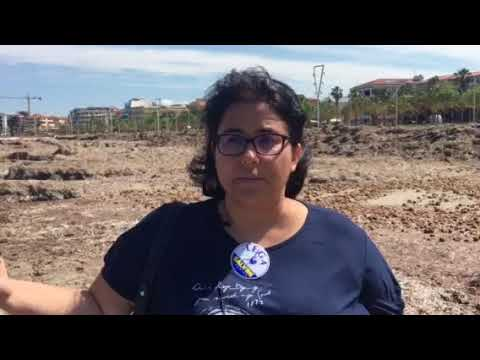 Alghero, invasione alghe: parla Vaccaro