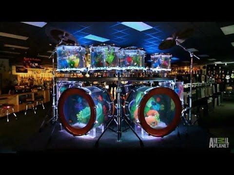 Aftershow Drum Set And Volcano Tanks Tanked Youtube