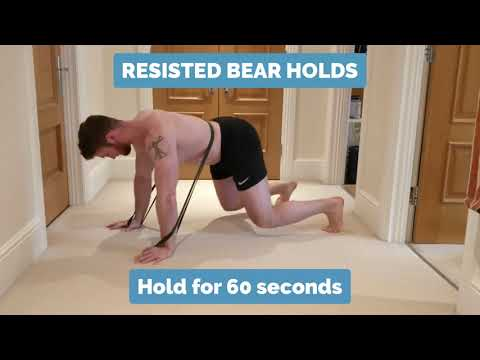 Low Back Exercise - Resisted Bear Holds | Epsom Chiropractor