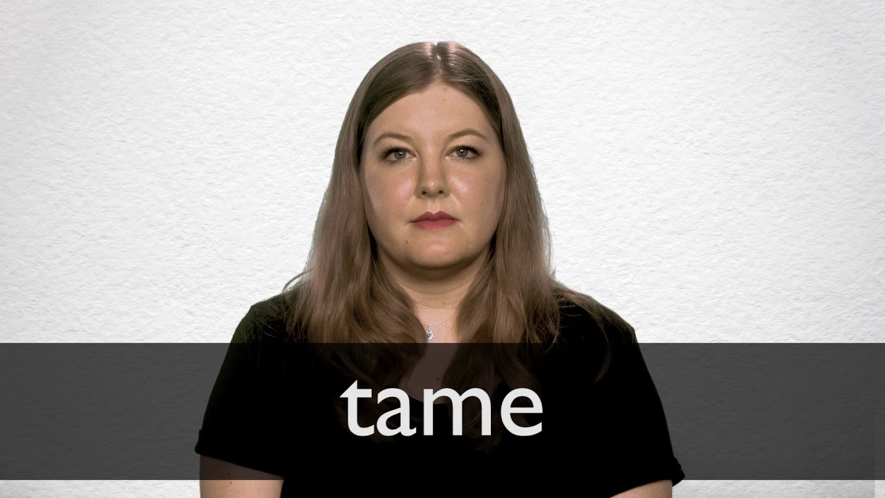 How to pronounce TAME in British English