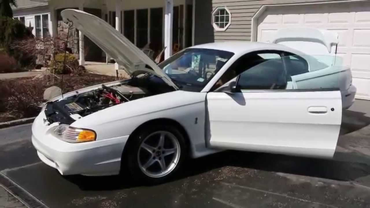 1995 mustang svt cobra r for sale212 of 250factory fresh w 454 original miles youtube