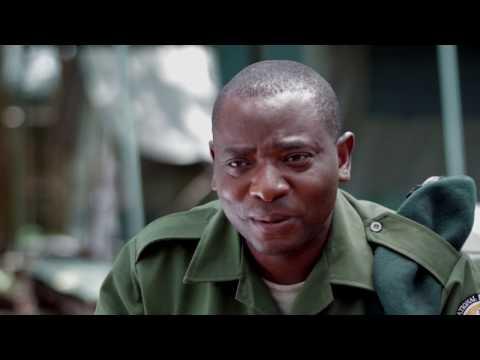 Rodrigue Katembo, 2017 Goldman Environmental Prize, Democratic Republic of Congo