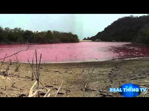 Water Turns Blood Red in Mexico