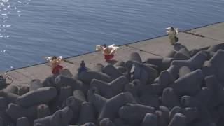 Berlevåg, havn og sentrum, magedans, Reinsdyr - Flying Over Norway