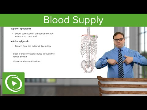 Видео Handbook of pharmacology and physiology in anesthetic practice