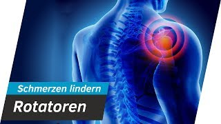 Schulterschmerzen SOFORT lindern - Rotatoren Training | Andiletics