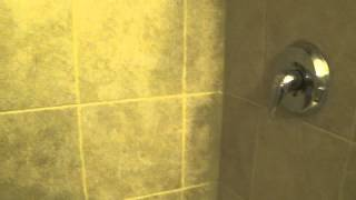 Painting Tile Grout Lines with PolyBlend Grout Renew as a Sealant  to Prevent Mold part 2