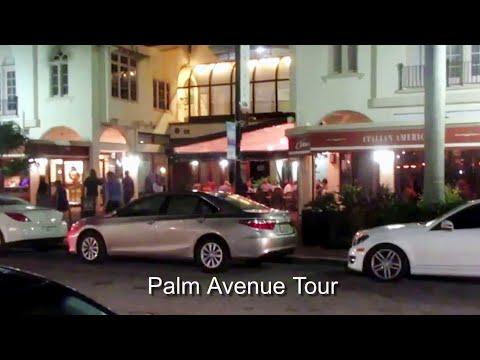 Palm Avenue - Review -Sarasota, Florida