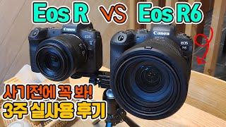 캐논 EOS R6 3주 실사용 후기 리뷰! R VS R…