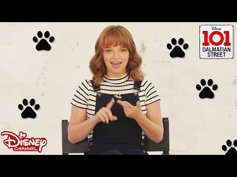 Penny On M.A.R.S Cast | Puppy Name Game! | 101 Dalmatian Street | Disney Channel Africa