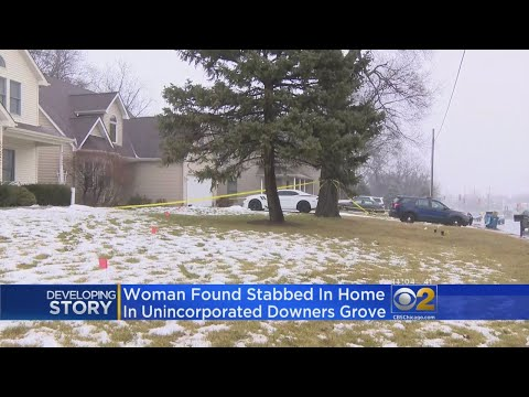 1 In Custody In Downers Grove Death Investigation