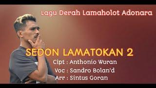 SEDON LAMATOKAN 2 - Lagu Daerah Lamaholot Adonara // Sandro Bolan'd