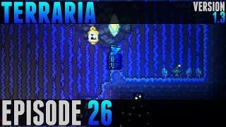 Terraria - #26 - Clentaminator