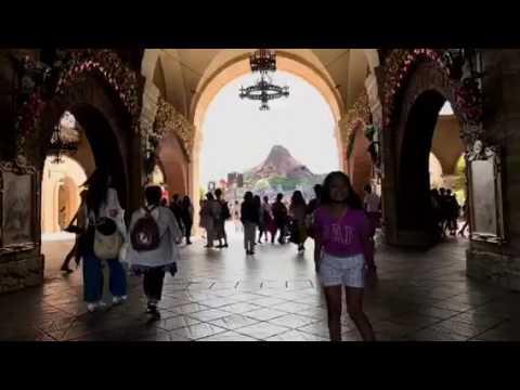 Disney ambassador resort japan