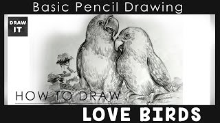 """How to draw lovebirds """