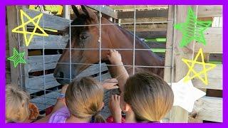 HER DREAM CAME TRUE...VISITING FARM ANIMALS