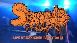 Скачать SERRABULHO Buttman Live At XXXICKEN PARTY 2016