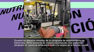 ADAPTACIONES NEURONALES AL ENTRENAMIENTO DE FUERZA (Entrenamiento de atleta por Mulata Fit)