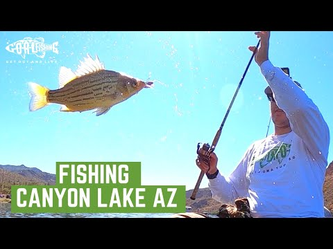 Fishing Canyon Lake AZ // Fill the Cooler with Yellow Bass