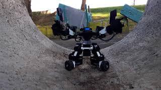 Новые роботы GANKER