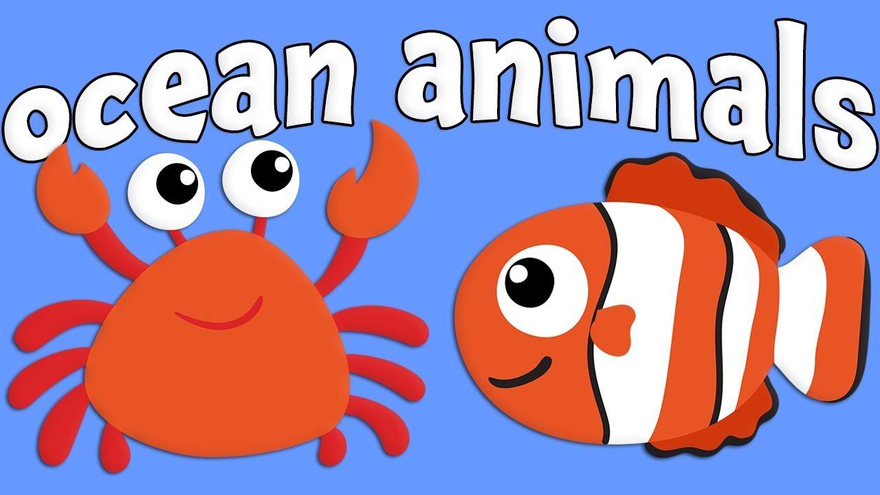ocean animals learning catholic k5 families