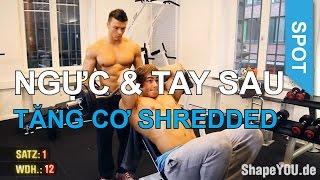 NGÀY 1 TẬP NGỰC & TAY SAU - Chương trình tập tăng cơ SHREDDED thumbnail