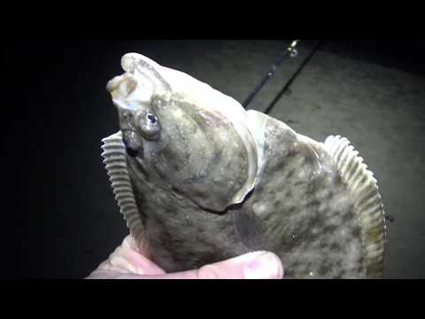 Winter Flounder Fishing