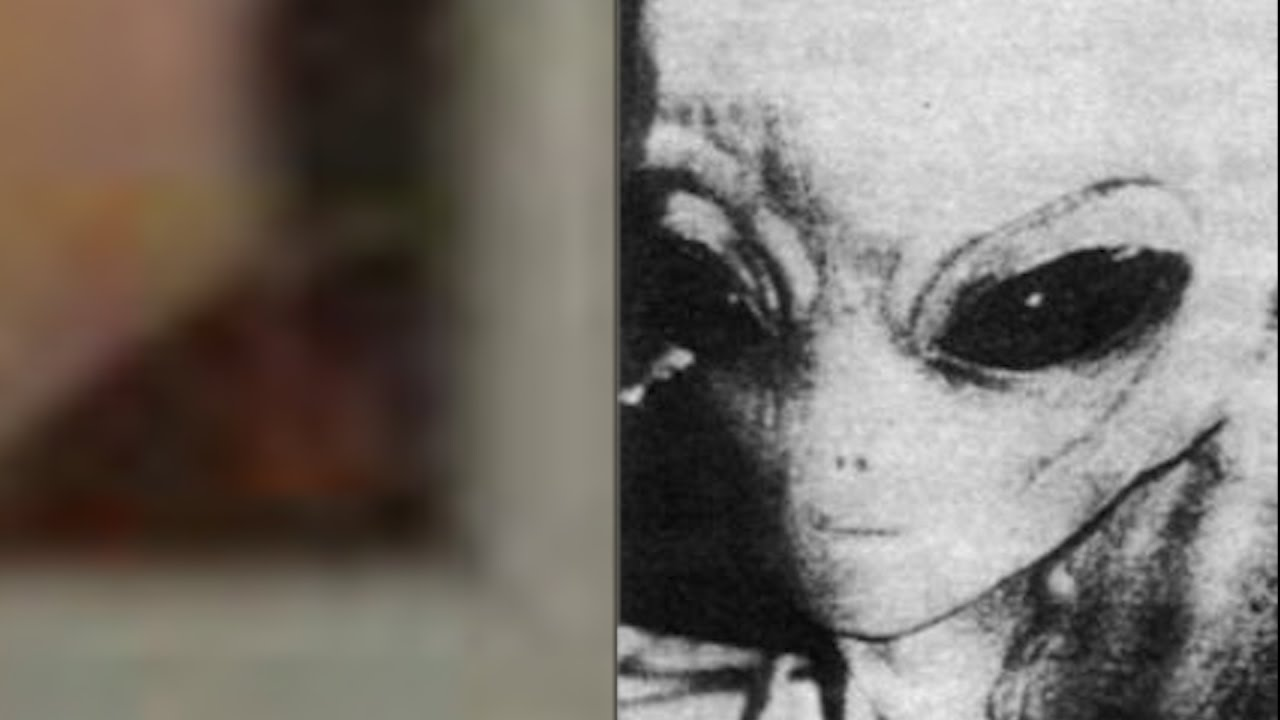 Alien Creature Shows Up In Photo - Man Had No Idea It Was There!