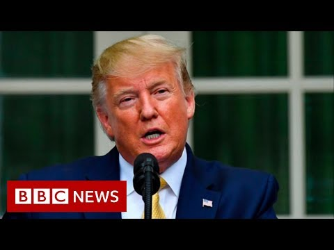 US Census 2020: Will Trump's Citizenship Data Order Work? - BBC News