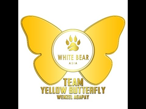 White Bear Asia Yellow Butterfly Production
