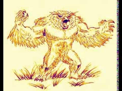 OWL FRICKIN BEAR!!!
