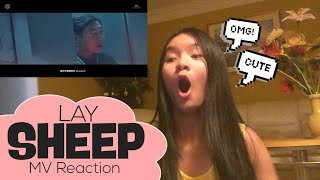 LAY - SHEEP MV Reaction