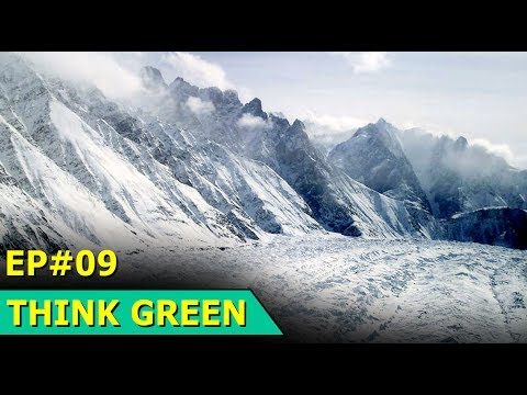 Indian Glacier | Japan Fuel Cell | Kuwait Turtles | Think Green : Episode 9