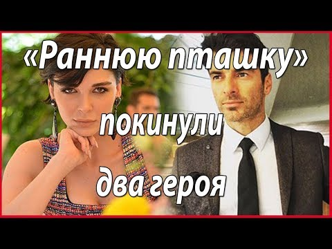 Два героя покинули «Раннюю пташку» #звезды турецкого кино