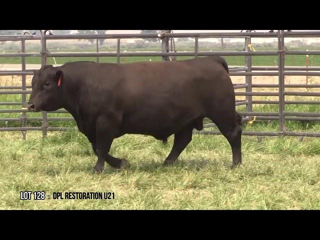 Dal Porto Livestock and Rancho Casino Lot 128