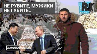 Продам Сибирь. Недорого. Российский лес везут в Китай эшелонами #ЧТОПРОИЗОШЛО?
