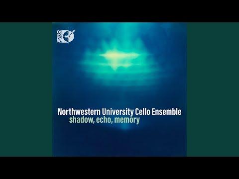3 Songs, Op. 7: Apres un reve, Op. 7, No. 1 (arr. R. Pidoux for cello ensemble)
