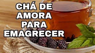 Chá de folha de Amora possui 22 vezes mais Cálcio do que leite, diz estudo