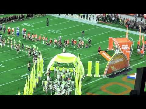 Pro Bowl 2015 introductions
