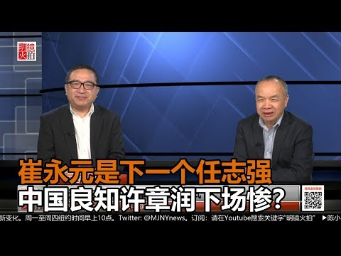 何频 陈小平:崔永元成为下一个任志强,中国良知公民许章润下场如何?