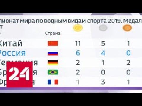 Беляев завоевал серебро в плавании на открытой воде на чемпионате мира - Россия 24