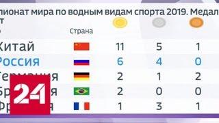 Смотреть видео Беляев завоевал серебро в плавании на открытой воде на чемпионате мира - Россия 24 онлайн