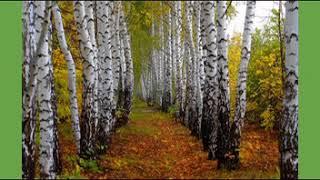 Свиридов Весна и осень