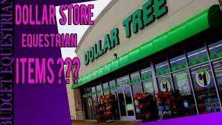 Dollar Store Haul Equestrian Edition!