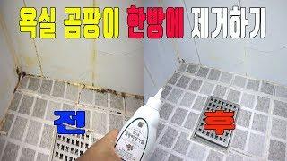 곰팡이제거 한방에 해결 - 욕실 곰팡이제거제 추천(힐더…