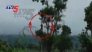 Live Video - Farmer Stuck In Flood Water | Medak | Telugu News | TV5 News