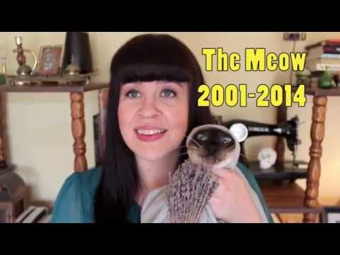 Ask A Mortician- Home Death & Wake For Your Pet
