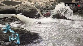 《天网》 抽水断案:河中惊现女尸 为查明死者身份警察决定抽干河水   CCTV社会与法