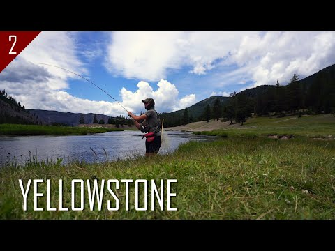 Fly Fishing Yellowstone National Park & the Surrounding Area (Ep. 2 of 4)