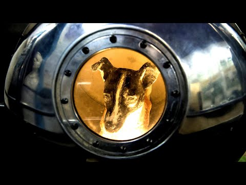 What Happened To Laika In Space? *The Space Dog*